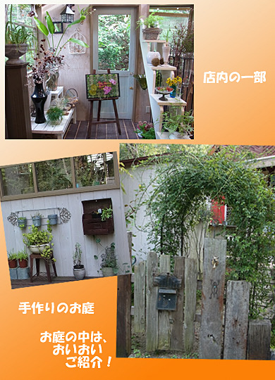 141007orange-2.jpg