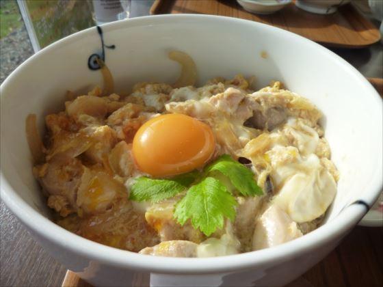 マザーズたまご館in地鶏親子丼 (1)_R