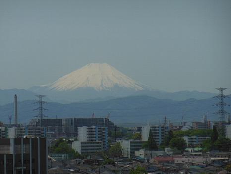 春の富士2