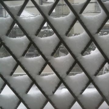 柄によさそうな雪模様