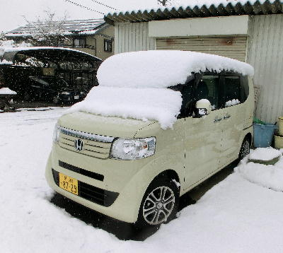 140214-大雪のバレンタイ庭-2