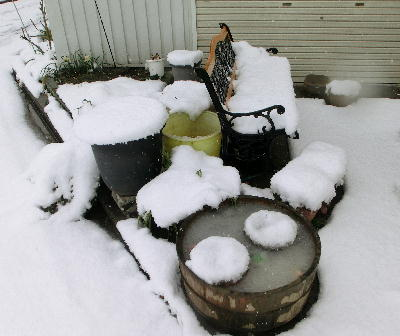 140214-大雪のバレンタイ庭-3
