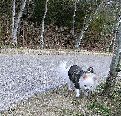 140221-銀散歩-5