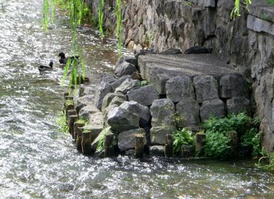 141022-京都-2