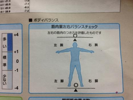 筋肉量左右バランス