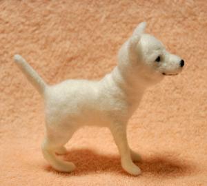 柴犬20140227 004