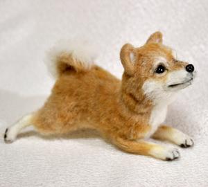20140428柴犬2 027