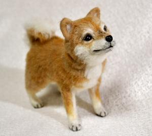 20140428柴犬2 032
