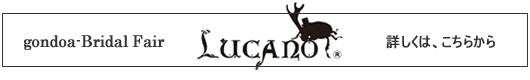 bf_lucano_530x80.jpg