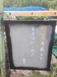 20140504-野菜を