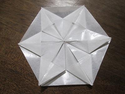 snowflake17.jpg