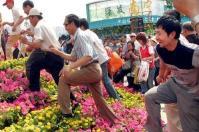 中国人マナー 花壇1