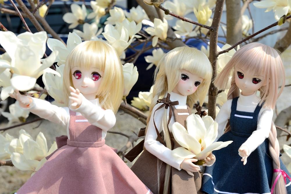 春の一枚(神目部屋の皆さん)_008