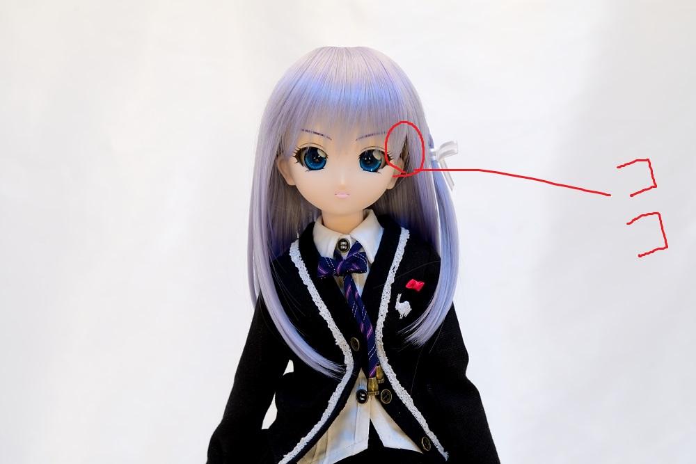 ウィッグ交換(ラトゥーニお嬢様)_001 - (1)