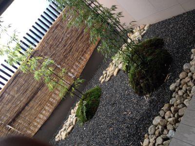 お風呂の横のお庭