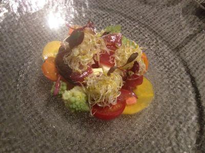 くみあげ湯葉と彩り野菜のサラダ仕立て 塩漬けマリネした炙り鰹を散らして