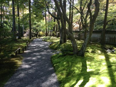 庭園内部の様子(5)