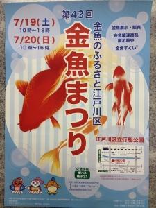金魚まつりポスター