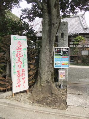 万福寺 入口
