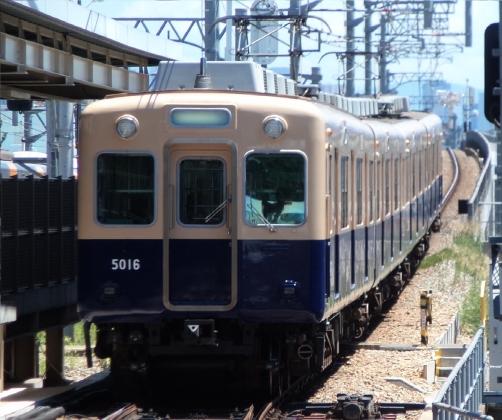 P7311526-b.jpg