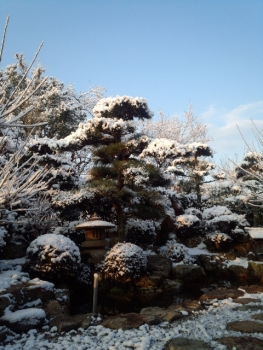 201403073月だけど 雪降りです。3
