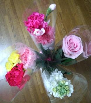 20140314花
