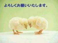 img_912856_61502887_5[1]