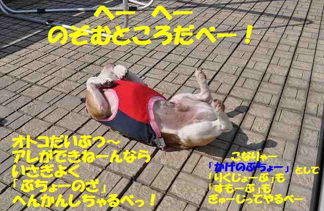 025_201409271006441c6.jpg
