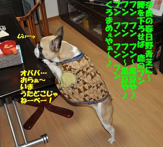 112_20141111142329f7b.jpg