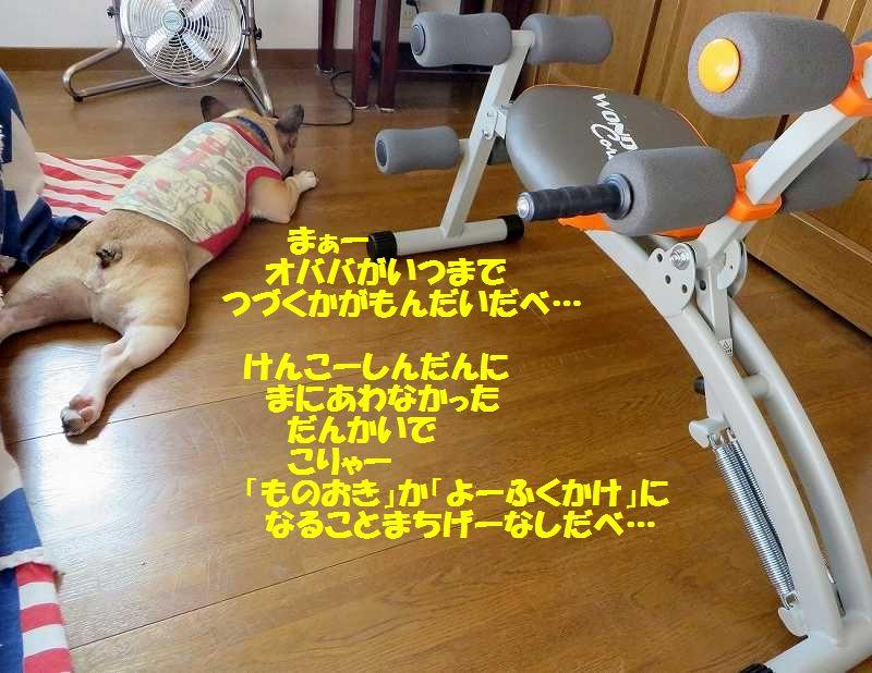 IMG_3035[1]