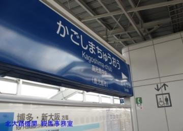 dbmIMG_4609.jpg