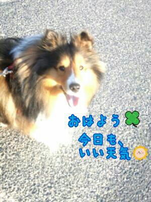 fc2_2014-04-04_12-31-19-435.jpg