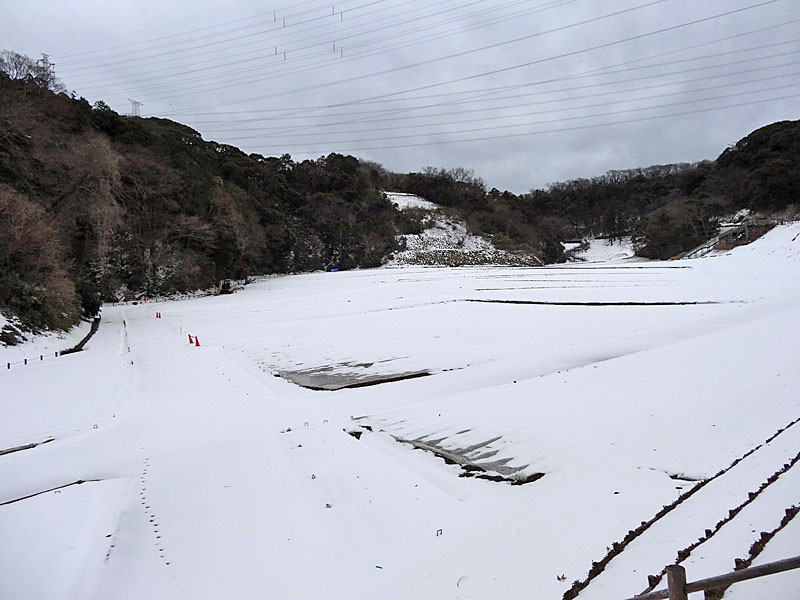 140215花の国雪景色2