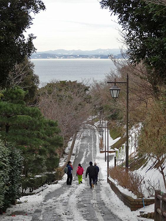 140215花の国雪景色8