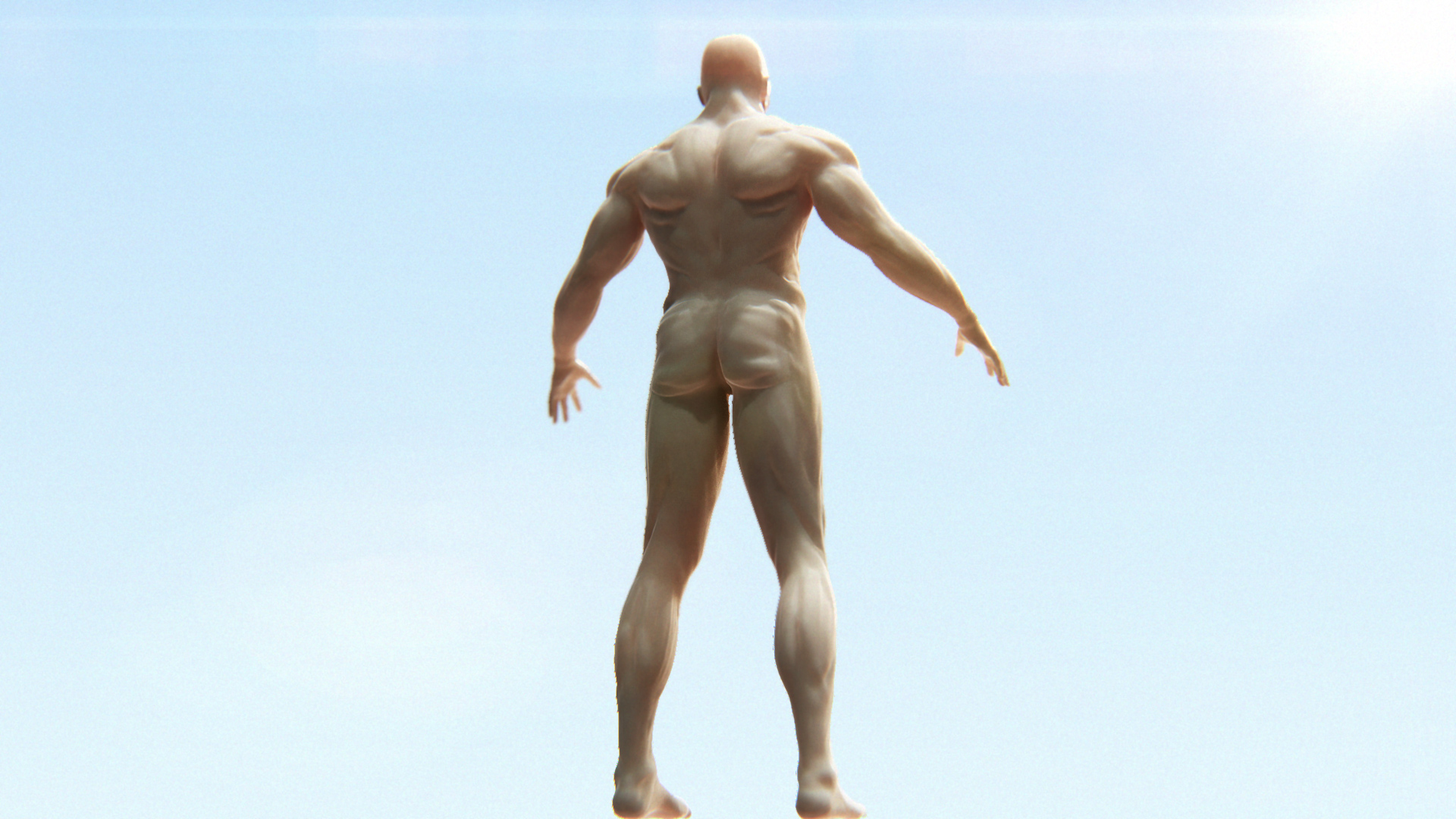 muscle_00003.jpg