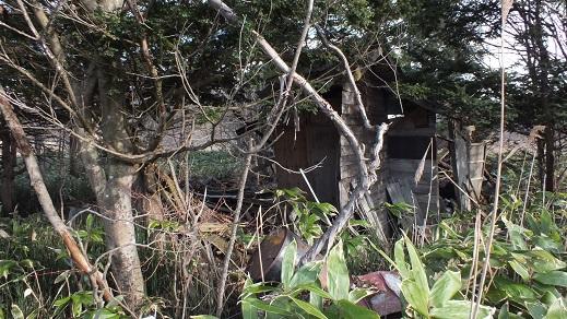北広島冷泉 (8)