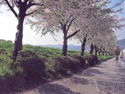 2014_0427諏訪へ0051