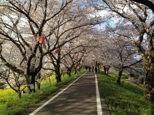 yoshimi2014-9_convert_20140405220725.jpg