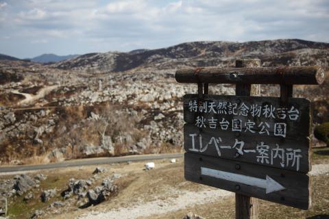 akiyoshidainoyaki3.jpg