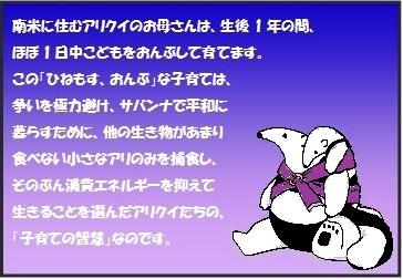 title-2.jpg