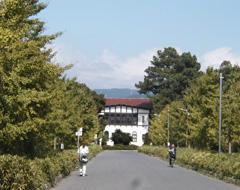 京都大学大学院農学研究科附属農場