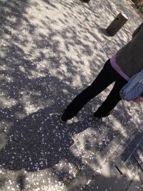 館林の桜②_convert_20140408235638