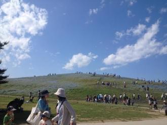 ひたち海浜公園⑬_convert_20140519215844