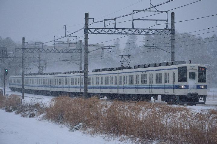 DSC_1454.jpg