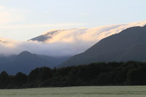 猿楽台地そば畑2014 9 4 17