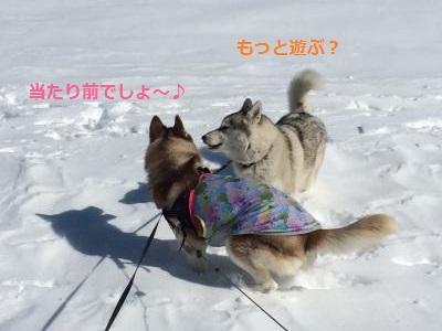 蜀咏悄564_convert_20140227210227