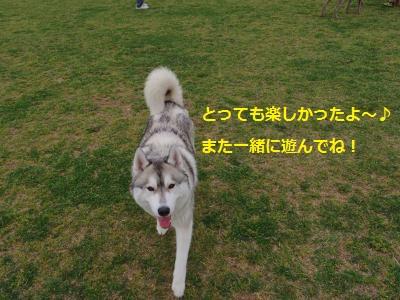 IMGP1266_convert_20140422134743.jpg