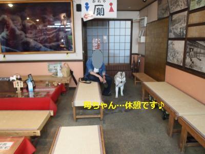 P5059430_convert_20140505213245.jpg