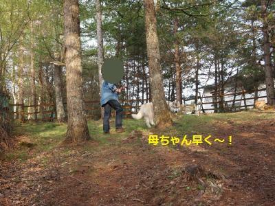 P5179569_convert_20140524221753.jpg