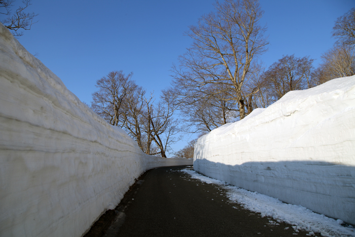 2014年4月12日 雪の回廊